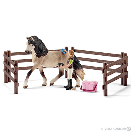 horse care set - andalusian